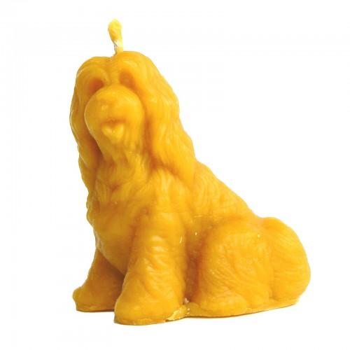 Pies owczarek - forma